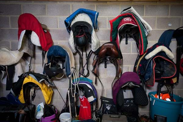 Saddles in the tack room