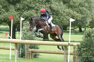 Horse and rider combination jumping a cross-country fence