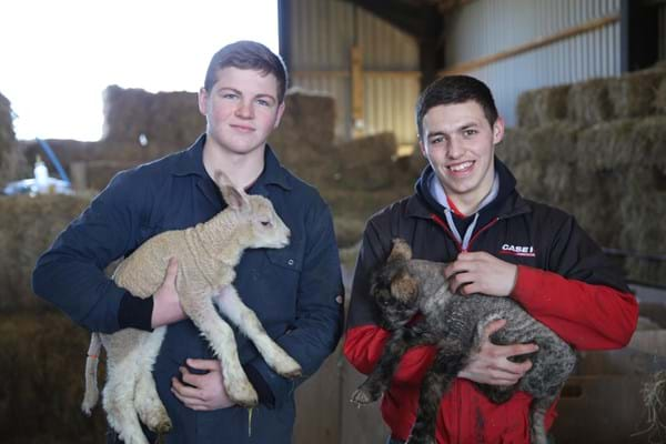 Two students holding lambs