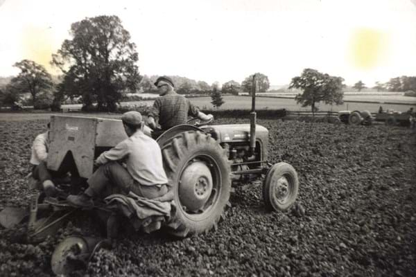 tractor in use at the farm