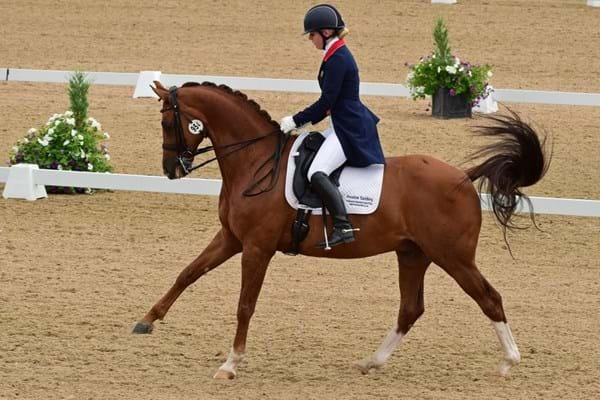 Image for Great Britain's para dressage powerhouses steal the limelight on Festival's opening day to move step closer to Rio selection