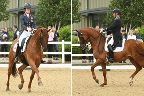 Image for Olympic heroes hail record-breaking Hartpury Festival of Dressage