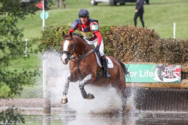 Image for Hartpury horse shows the sky is the limit as purple patch continues