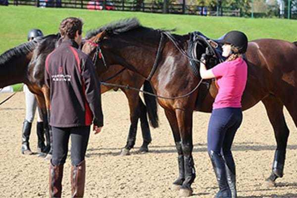 Image for Norwegian students step into Hartpury's equine world