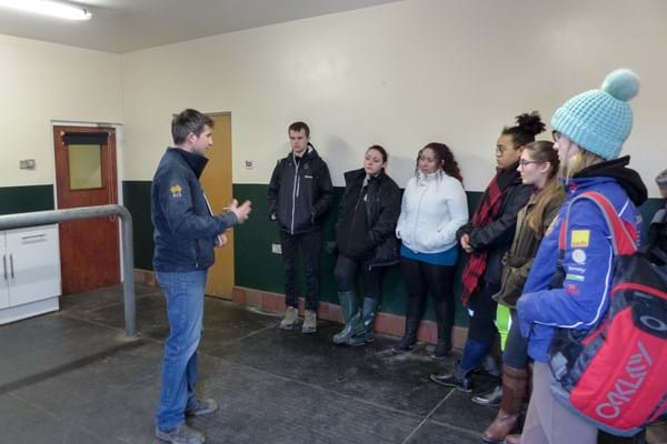 Image for Hartpury's students get the inside track on equine lameness in specialist seminars