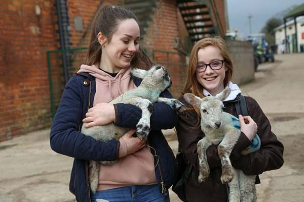 Image for Schoolchildren get a feel for farming at Hartpury's Agri-Skills day