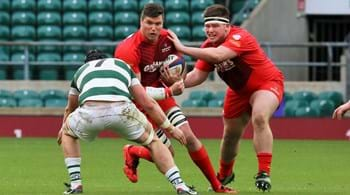 Hartpury's Negri nails down national spot with Italy for summer internationals