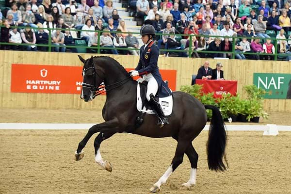Image for Olympic legends set to showcase their skills at Hartpury Festival of Dressage