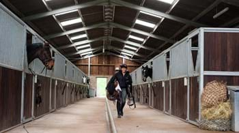 Hartpury equine students' research provides food for thought on helping to reduce horse frustration