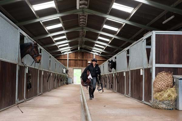 Image for Hartpury equine students' research provides food for thought on helping to reduce horse frustration