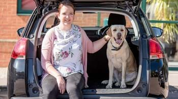 Hartpury study shows risks for dogs jumping from car boots