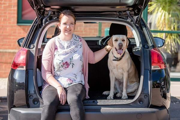 Image for Hartpury study shows risks for dogs jumping from car boots