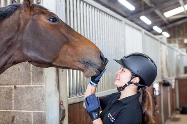 A student patting a horse's nose on Hartpury yard