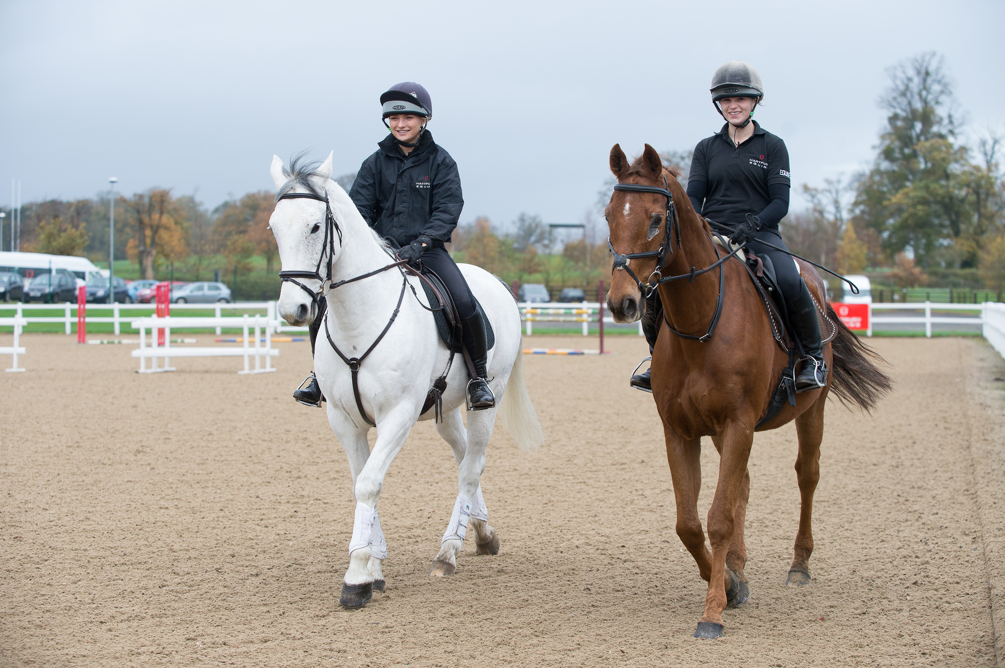 Equine Courses And Diplomas College Hartpury University And Hartpury College