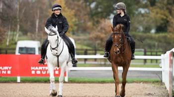Image for Hartpury involved in investigating impact of coronavirus pandemic on horse owners