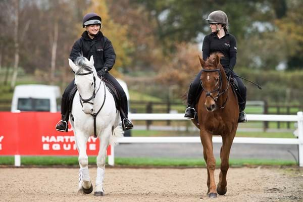Image for Survey reveals horse owners' concerns during pandemic